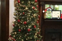 Library-Christmas-tree-697x1024