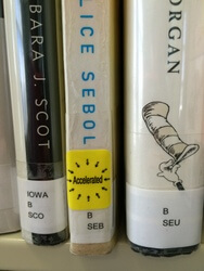 Books with spine labels